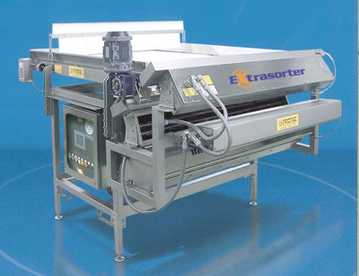 Electronic sorting machine